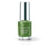 Lakme Color Crush Nail Art, Deep Olive M18 6ml