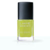 Lakme Absolute Gel Stylist Nail Color, Mojito