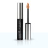 Lakme Absolute Mattereal Mousse Concealer 9gm