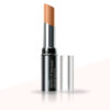 Lakme Absolute White Intense SPF 20 Concealer Stick, Honey